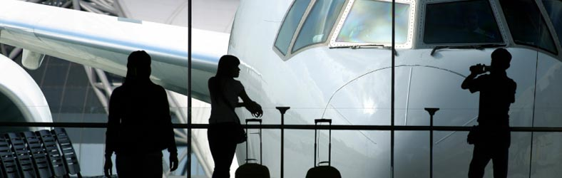 Bus charter airport transfer